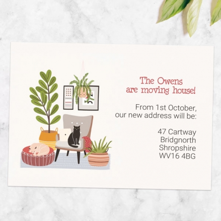 Address Cards - House Cats - Pack of 10