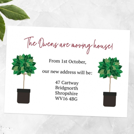 Address Cards - Potted Bay Trees - Pack of 10