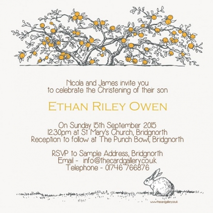 Christening Invitations - Tree & Rabbit - Postcard - Pack of 10