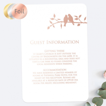 Country-Love-Birds-Foil-Guest-Information