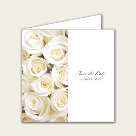 Cream English Rose - Save the Date Cards