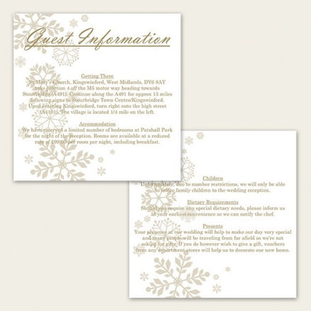 Falling Snowflakes - Guest Information